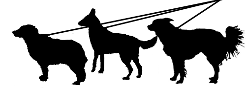 3 canine silhouttes on leads